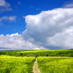 nature paysage — Photo