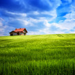 Summer house on a green hill — Stock Photo