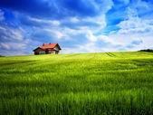 Sommarhus på en grön kulle — Stockfoto