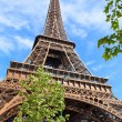 Eiffel Tower in Paris France — Stock Photo #27997913
