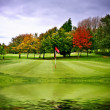 Golf veld — Stockfoto