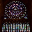 Rose window of Notre Dame Cathedral — Stock Photo