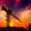 Stock Photo: The crane at sunset