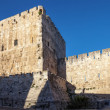 Stock Photo: Walls of Jerusalem