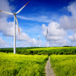 Wind energy — Stock Photo