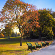 Bench in the autumn park — Stock Photo #33451909
