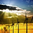 Wind Farm at Sunset — Stock Photo #33505689