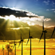 Stock Photo: Wind Farm at Sunset