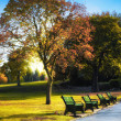 Sunny autumn park — Stock Photo