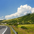 Country road — Stock Photo #3455362