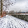 Snowy winter — Stock Photo #35882431