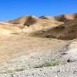 Judean desert landscape — Stock Photo