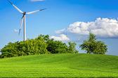 Groene omgeving — Stockfoto