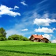 Spring landscape — Stock Photo #42195627