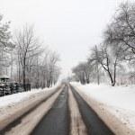 Winter Road — Stock Photo #4709869