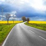 Sunny road — Stock Photo