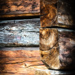 Wood — Stock Photo #18541475