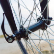 Bike — Stock Photo #31596335