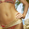 Close up view of well shaped woman's belly in summer environment - Stockfoto