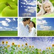 Royalty-Free Stock Photo: Summertime theme photo collage composed of few images