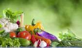 Close up view of nice fresh vegetables on green summer back — Stock Photo