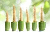 Close-up van mooi vers koren op witte achterzijde — Stockfoto