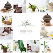 Collage di tema termale composto da poche immagini — Foto Stock