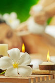 Portrait of young beautiful woman in spa environment. Focused on flowers — Stock Photo