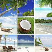 Beach collagebeach collage — Stock Photo