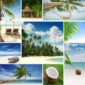 Tropic mix — Stock Photo