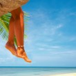 View of nice smooth womans legs hanging from the palm — Stock Photo #25907377
