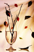 玻璃与一些枝在它在秋天期间的视图 — 图库照片