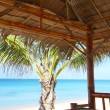 View of nice exotic bamboo hut on tropical beach — Stok fotoğraf