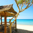 View of nice exotic bamboo hut on tropical beach — Stock Photo
