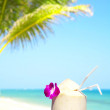 View of exotic coconut cocktail in tropical environment — Stock Photo