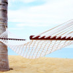 Palm and hammock — Stock Photo #25991677