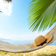 ������, ������: Palm and hammock