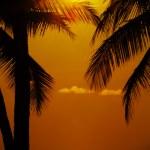 Tropic sunset — Stock Photo