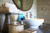 Fragment like View of mixed style Interior of bath room — Foto de Stock