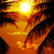 Stock Photo: Equator sunset