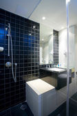 View of nice glassed stylish bathroom interior — Stock Photo