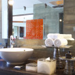 Fragment like View of mixed style Interior of bath room — Stock Photo