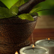 Close up view of candles, brown mortar with ingredients inside — Stock Photo #33285335