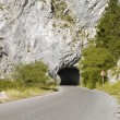 Panoramic view of empty road and tunnel through the mountain — Stock Photo #33285485