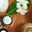 Stock Photo: Spa theme objects