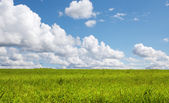 View of nice fresh summer valley and blue clouded sky — Stock Photo