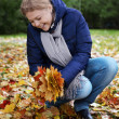 autumn girl — Stock Photo #39147347