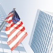 Flag usa — Stock Photo #39148211