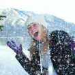 Stock Photo: Snowfall