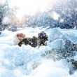 Snowfall — Stock Photo #39214609